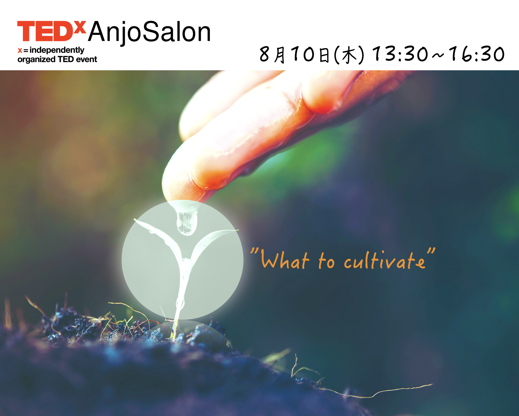 TEDxAnjoSalon Vol.5