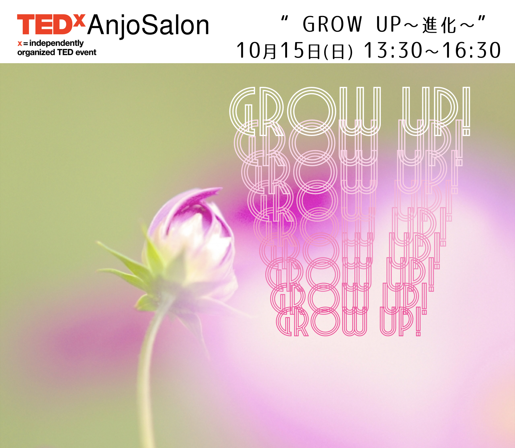 TEDxAnjoSalon Vol.6